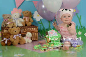 Cake Smash Teddy Bears Picnic Kent