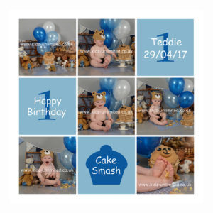 Cake Smash Teddy Bears Picnic